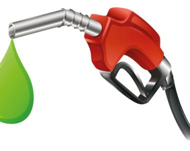 Biogas och etanol ger störst klimatvinst per krona