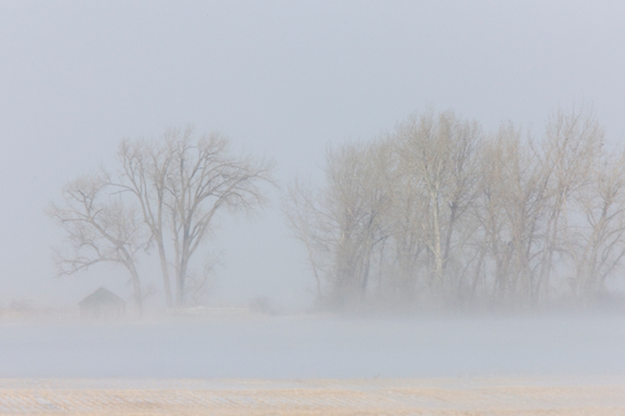 Årets vinter lämnar dyra spår efter sig
