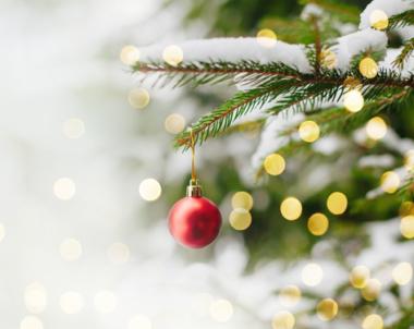 December – Julmånad, enligt Bondepraktikan